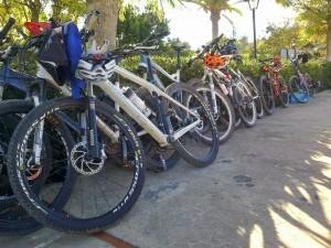 Socorrida foto de las bicicletas apoyadas