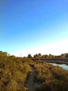 La senda del canal