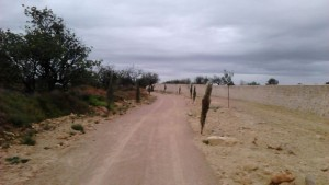 Camino a Montecañada