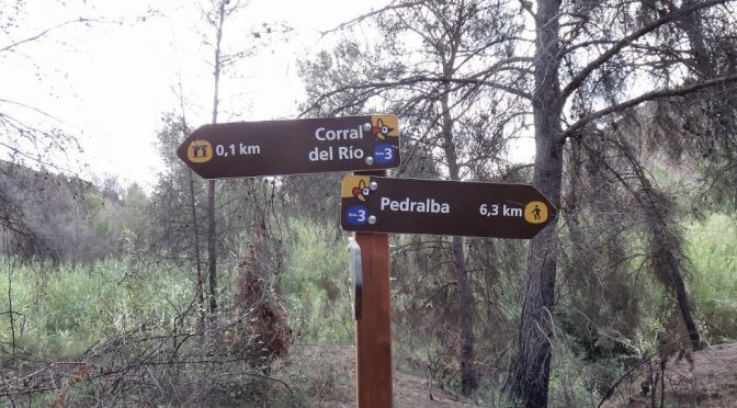 Pedralba, 2 de noviembre de 2013